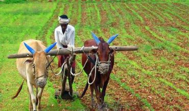 Sharad Joshi on The Unchanged Quarter Century for Farmers