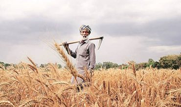 A Viable Agriculture Policy for Sustained Growth
